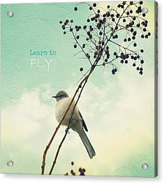 Learn To Fly Acrylic Print