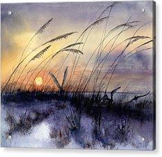 Least Terns Acrylic Print by Bobby Walters