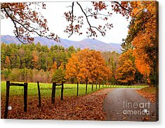Acrylic Print featuring the photograph Leaves A'fallin by Geraldine DeBoer
