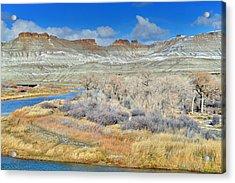 Leaves Have Left Scott's Bottom Acrylic Print by Eric Nielsen