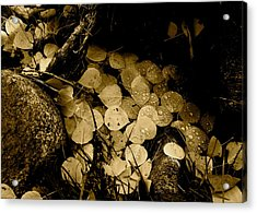 Leaves In Sepia Acrylic Print
