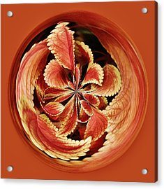 Leaves Orb Acrylic Print by Paulette Thomas