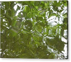 Acrylic Print featuring the photograph Leaves Reflected by Winifred Butler
