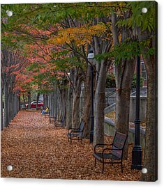 Acrylic Print featuring the photograph Leaving by Glenn DiPaola
