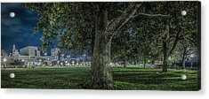 Leclaire Park Acrylic Print by Ray Congrove