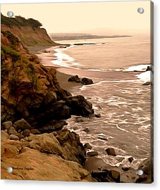 Leffingwell Landing Cambria Detail 2 Acrylic Print by Barbara Snyder