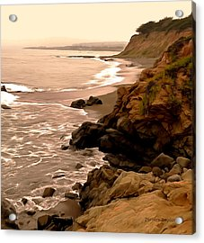 Leffingwell Landing Cambria Detail Acrylic Print by Barbara Snyder
