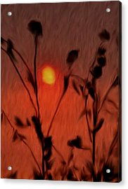 Left-handed Sundown Acrylic Print