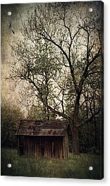 Left Untouched Acrylic Print by Dale Kincaid