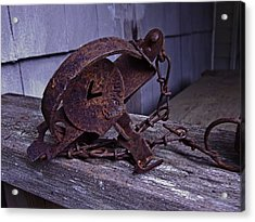 Leg Hold Trap  Acrylic Print by Rob Mclean