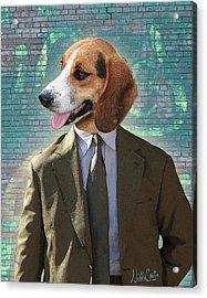 Legal Beagle Acrylic Print by Nikki Smith