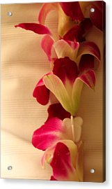 Acrylic Print featuring the photograph Lei  by Cathy Donohoue