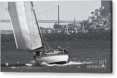 Leisure Sailor Acrylic Print by Scott Cameron