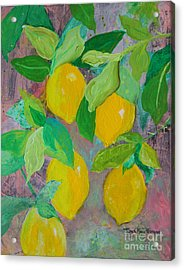 Lemons On Lemon Tree Acrylic Print