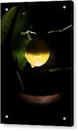 Lemon's Planet Acrylic Print