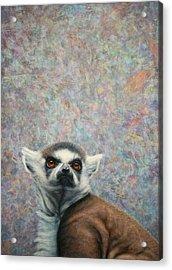 Lemur Acrylic Print by James W Johnson