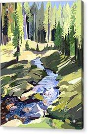 Lena Peak Stream Acrylic Print