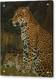 Leo And Friend Acrylic Print