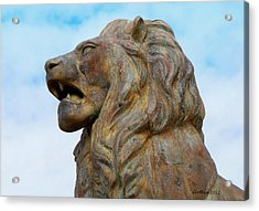 Acrylic Print featuring the photograph LEO by Dick Botkin