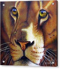 LEO Acrylic Print by Jurek Zamoyski