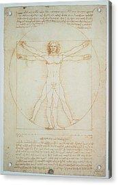 Leonardo Da Vinci, Vitruvian Man - Acrylic Print by Everett