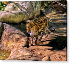 Acrylic Print featuring the painting Leopard by Michael Pickett