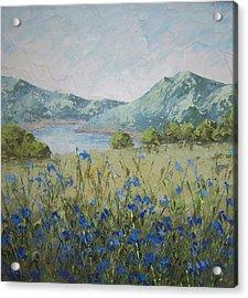 Les Alpes Acrylic Print