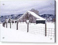 Acrylic Print featuring the photograph Let It Snow by Kristal Kraft
