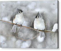 Let It Snow Acrylic Print by Lori Deiter