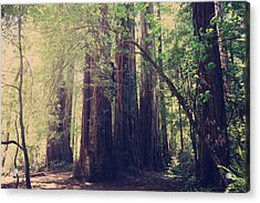 Let Me Be The One Acrylic Print by Laurie Search