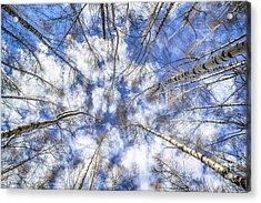 Let Me Lord Wind ... Acrylic Print by Adrian Urbanek