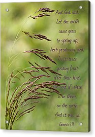 Let The Earth Bring Forth Grass Genesis Acrylic Print