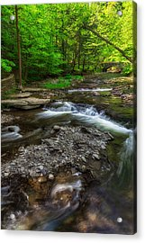 Letchworth Wolf Creek Acrylic Print by Mark Papke