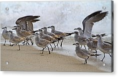 Let's Blow This Joint Acrylic Print by Betsy Knapp