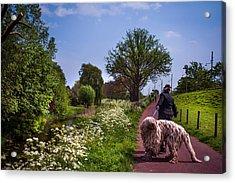 Lets Go Home Acrylic Print by Jenny Rainbow