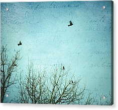 Acrylic Print featuring the photograph Letters Of Flight by Lisa Parrish