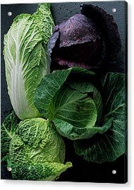 Lettuce Acrylic Print