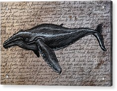 Leviathan Acrylic Print by Mark Zelmer