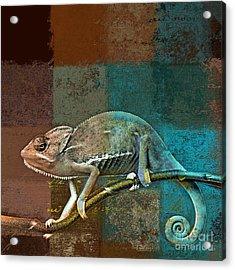 Lezardin - J131131149v5bcr Acrylic Print by Variance Collections