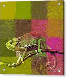 Lezardin - J131131149v5bgrp Acrylic Print by Variance Collections