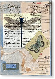 Libellule Acrylic Print by Tamyra Crossley