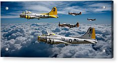 Liberty Belle And Fuddy Duddy With Mustangs Acrylic Print by Ken Brannen