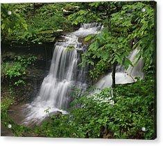 Lichen Falls Ozark National Forest Acrylic Print