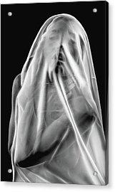 Life Behind The Veil Acrylic Print