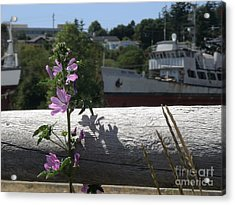 Life In The Boatyard Acrylic Print