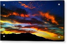 Life In The Desert Acrylic Print by Chris Tarpening