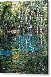 Life In The Water Acrylic Print