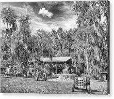 Acrylic Print featuring the photograph Life On The Farm by Howard Salmon