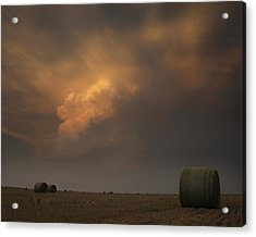 Life On The Plains Acrylic Print