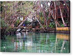 Life On Weeki Wachee Springs Acrylic Print